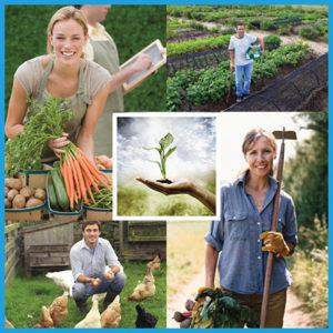organic-farmer-certificate-course